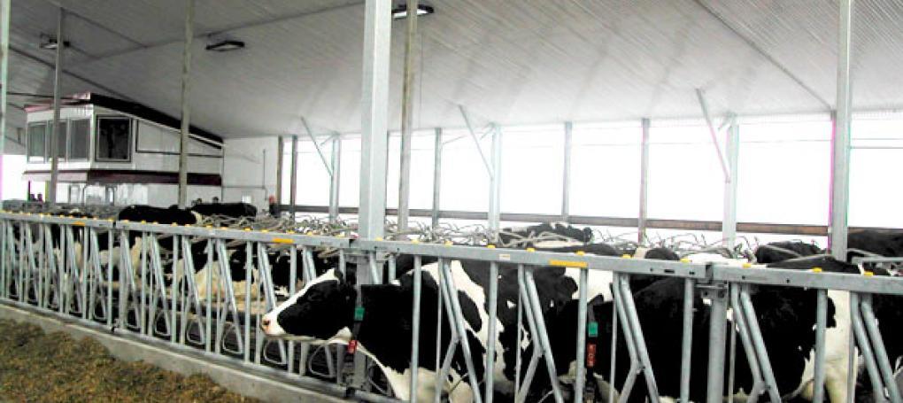 TUFTEX PVC Vinyl in dairy application