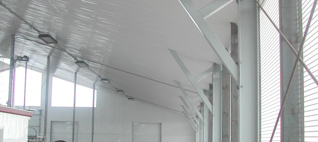 PVC ceiling & cladding in a Dairy
